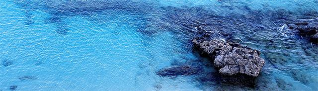 ocean bule black