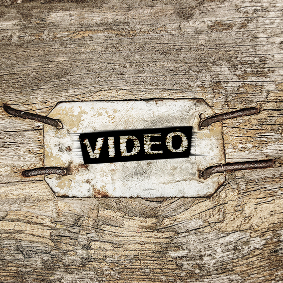 Video Meer Leben